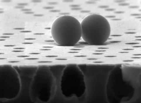 foto microscopica molecole che non penetrano